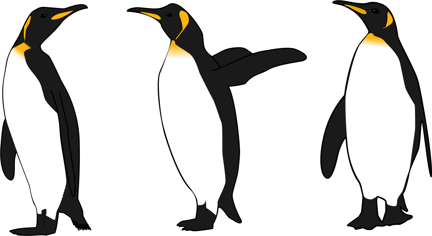 Three king penguins big. Penguin clipart realistic image library download