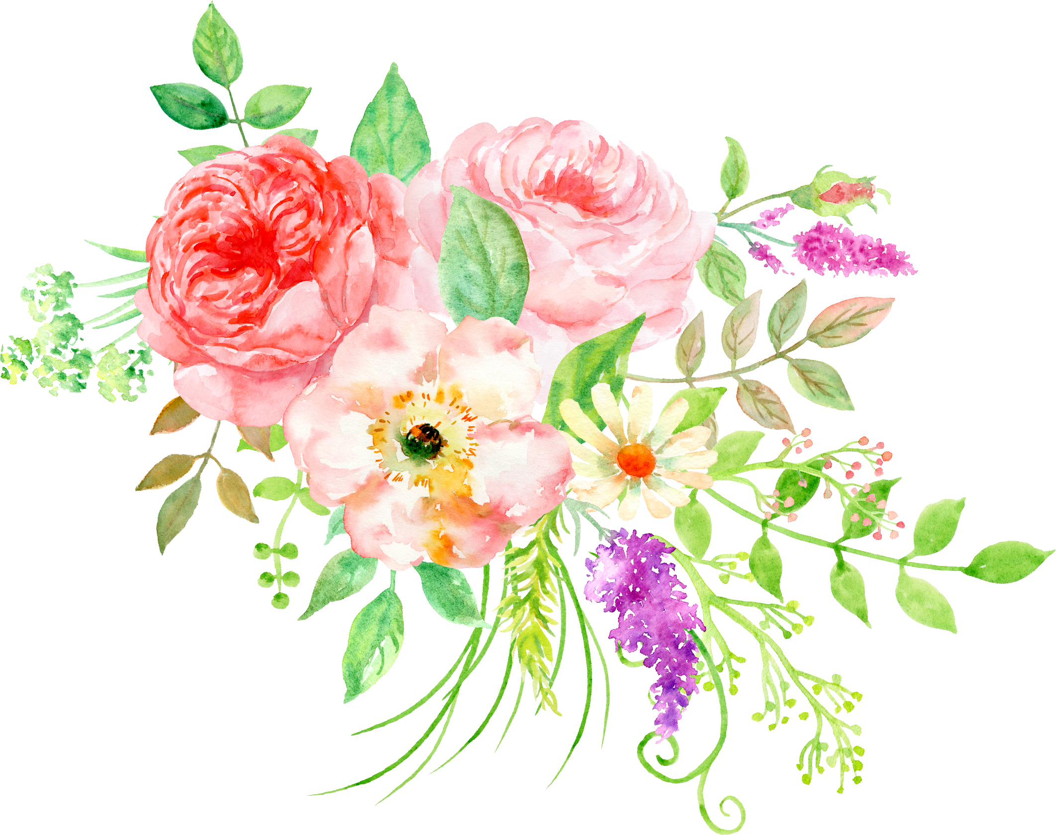 Peony clipart hand drawn. Pin by jennifer winter