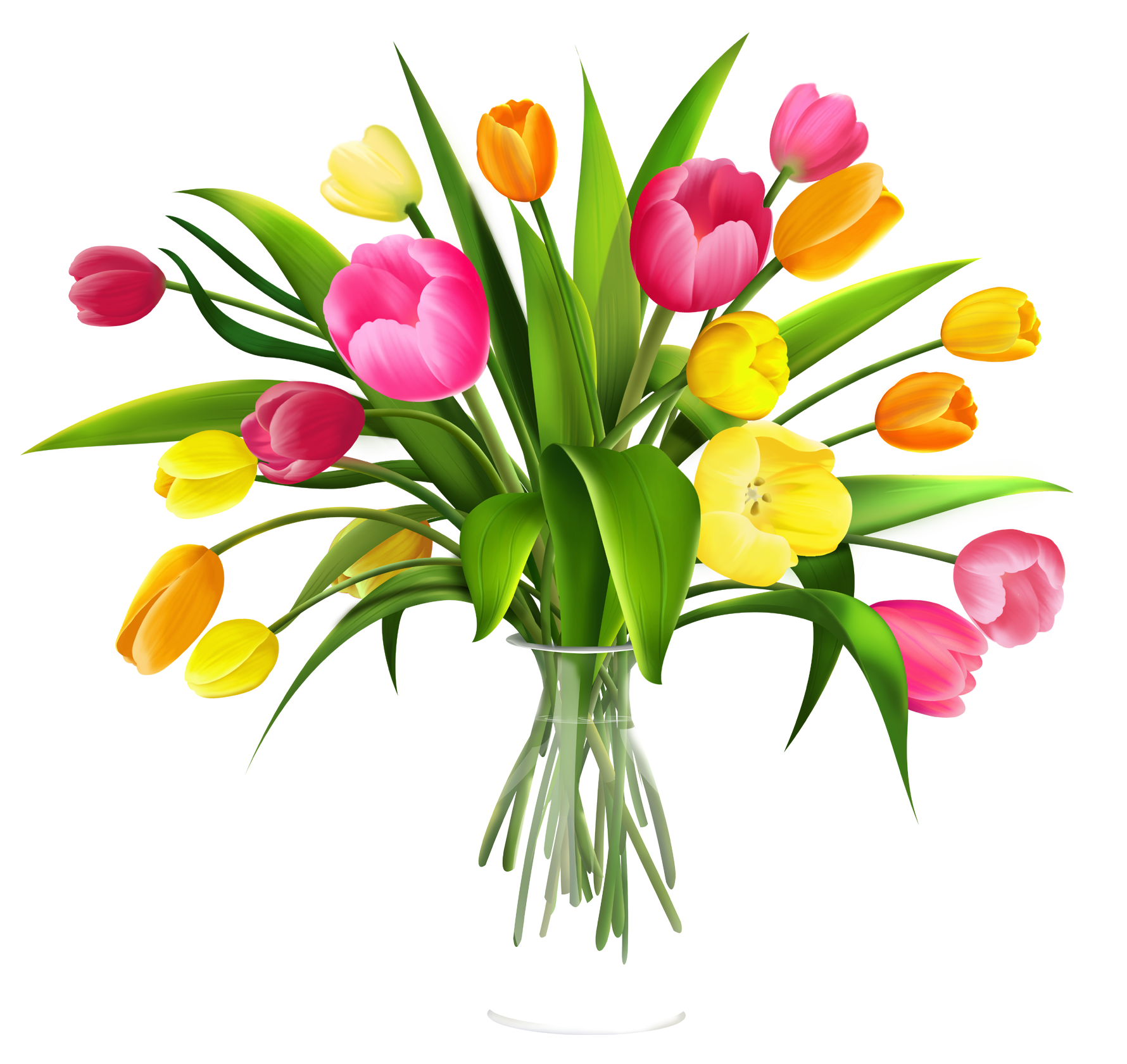 Free clip art flowers. Daffodil clipart tulip clip art royalty free library