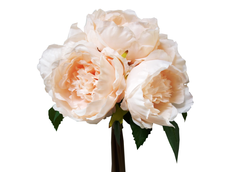 Peony bouquet png. X roses flowers silk
