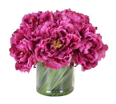 Peony bouquet png. Magenta in acrylic water