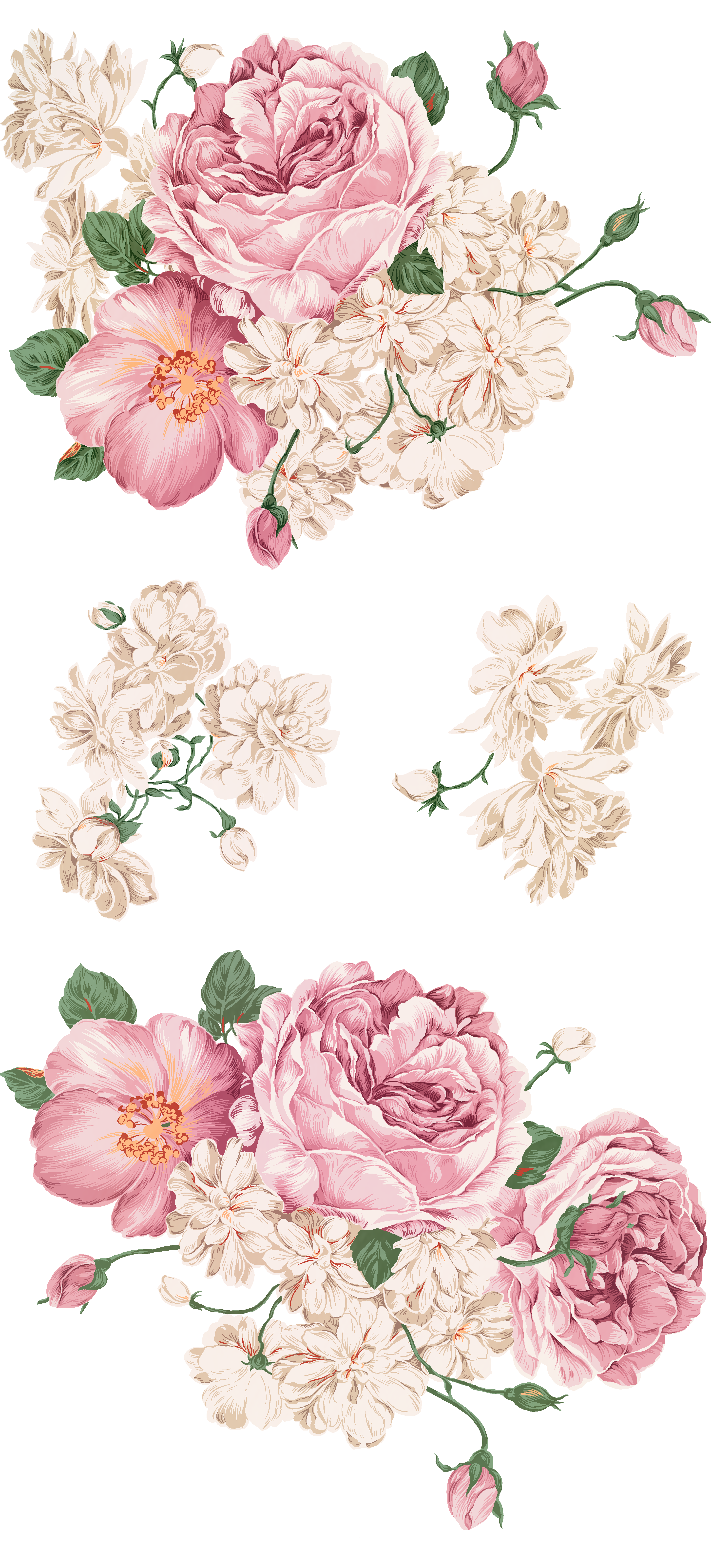 Peony clipart hand drawn. Png library huge