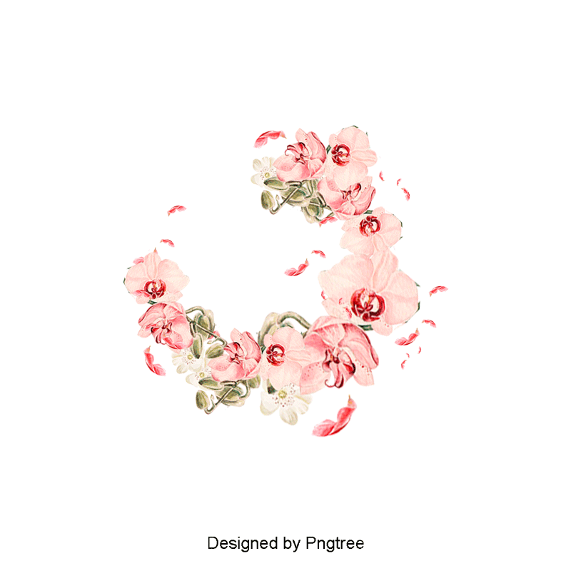Peony clipart hand drawn. Painted flowers pink extravagance