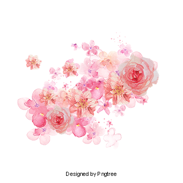 Pink watercolor flower png. Flowers vectors psd and