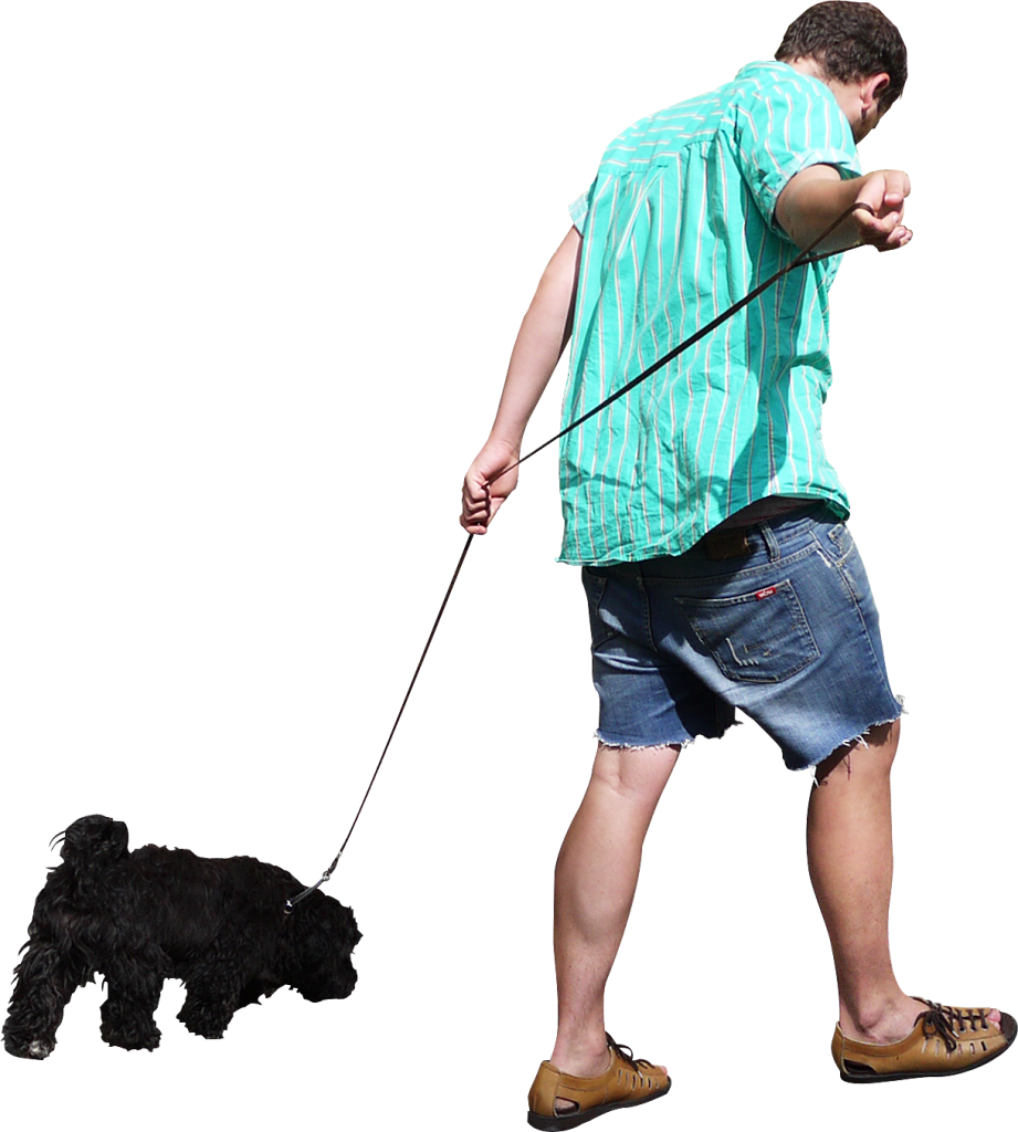 walking dog png
