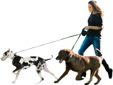 Walking dog png. People images in collection