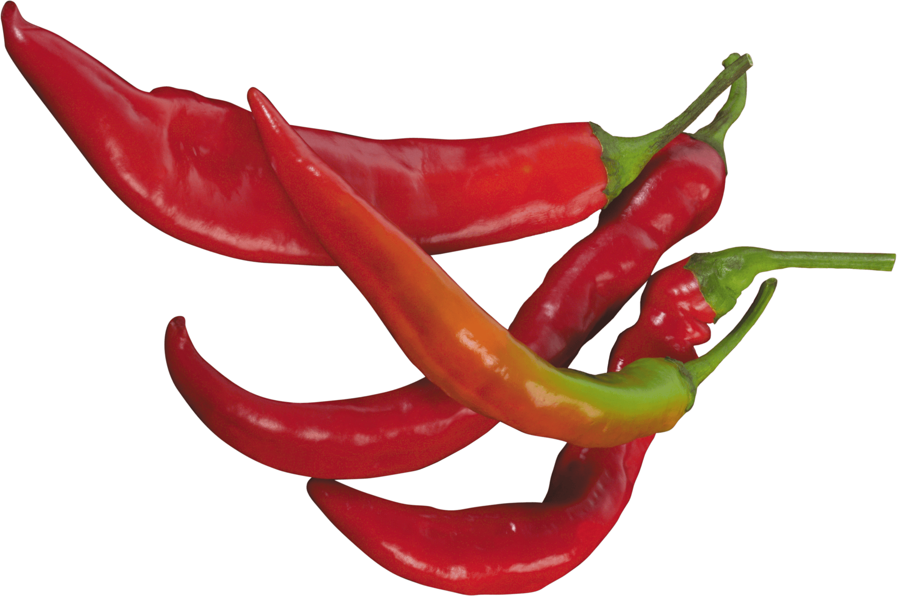 Pepper transparent chili. Red chilli png stickpng