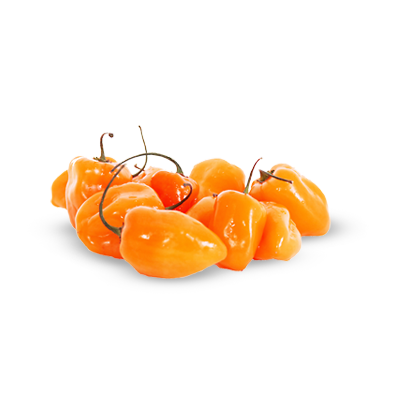 Pepper transparent habanero. Png images pluspng