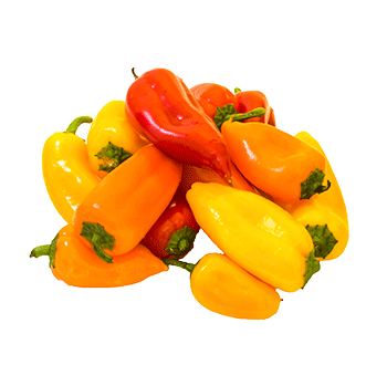 Pepper transparent sweet. Products uesugi farms mini