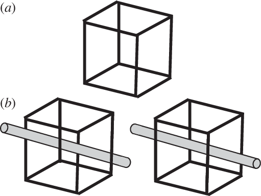Perceptual drawing. A necker cube two
