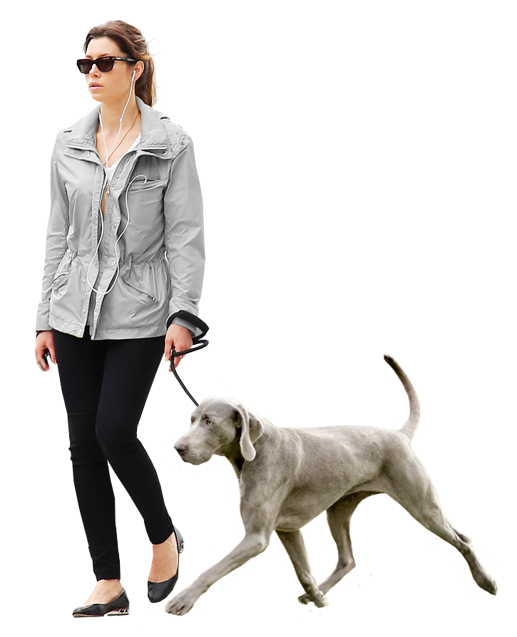 person walking dog png