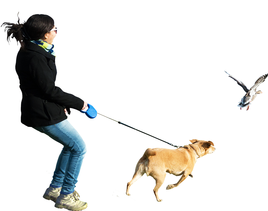 Person walking dog png. Do you need cut