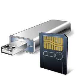 Personal clip usb. Flash card with reader