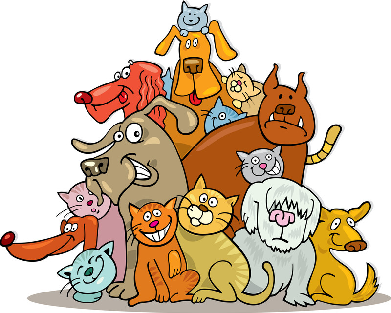 Pet clipart animal shelter. Beverly the animals thank