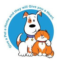 Pet clipart animal shelter. How to start an