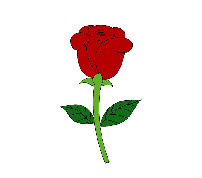 Petal drawing cartoon rose. How to draw a