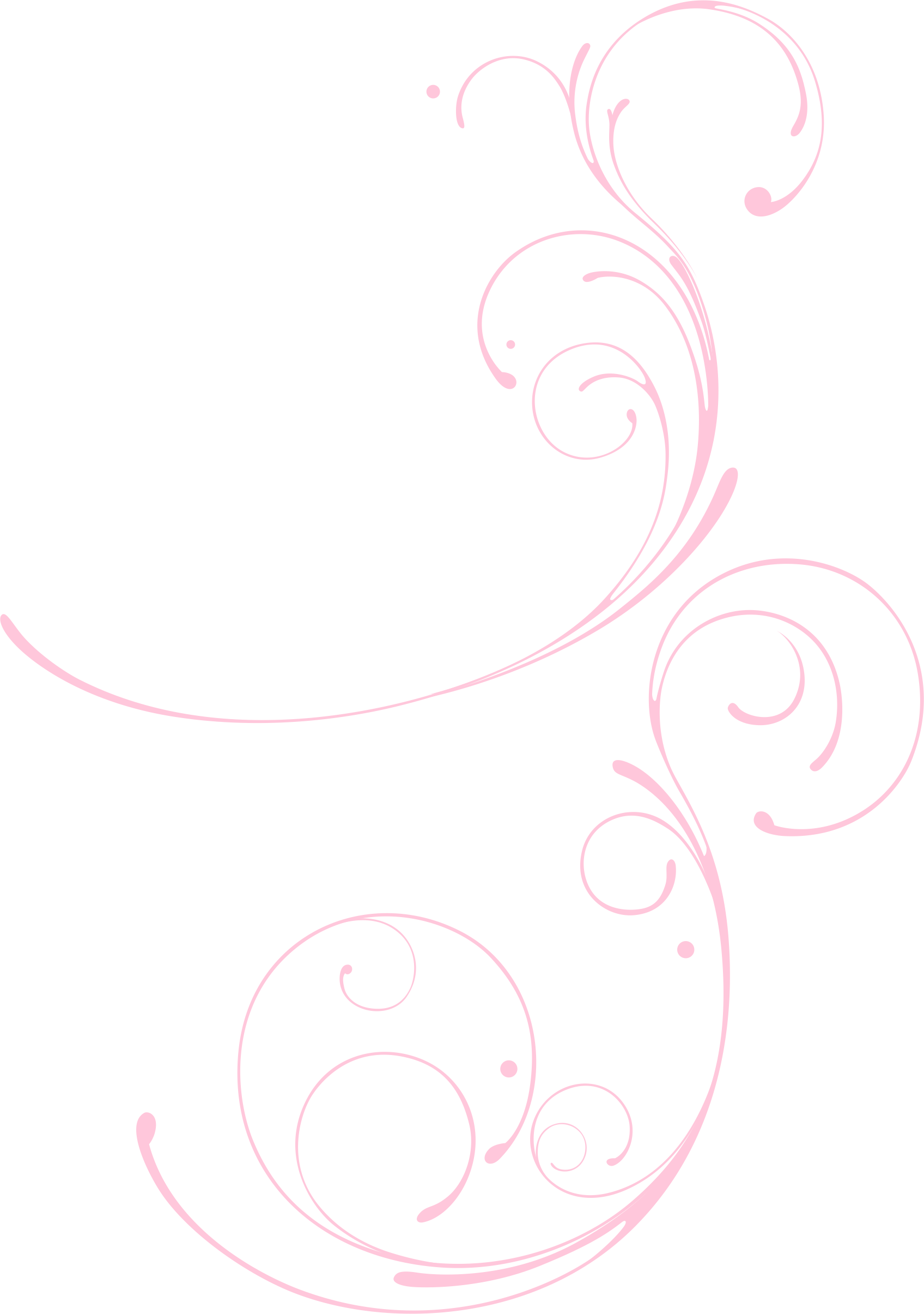 Petal drawing circle. Pattern pink line transprent