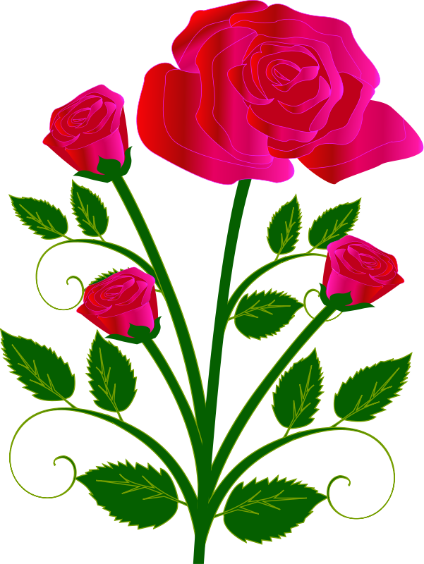 Petal drawing rose bud. Clipart at getdrawings com