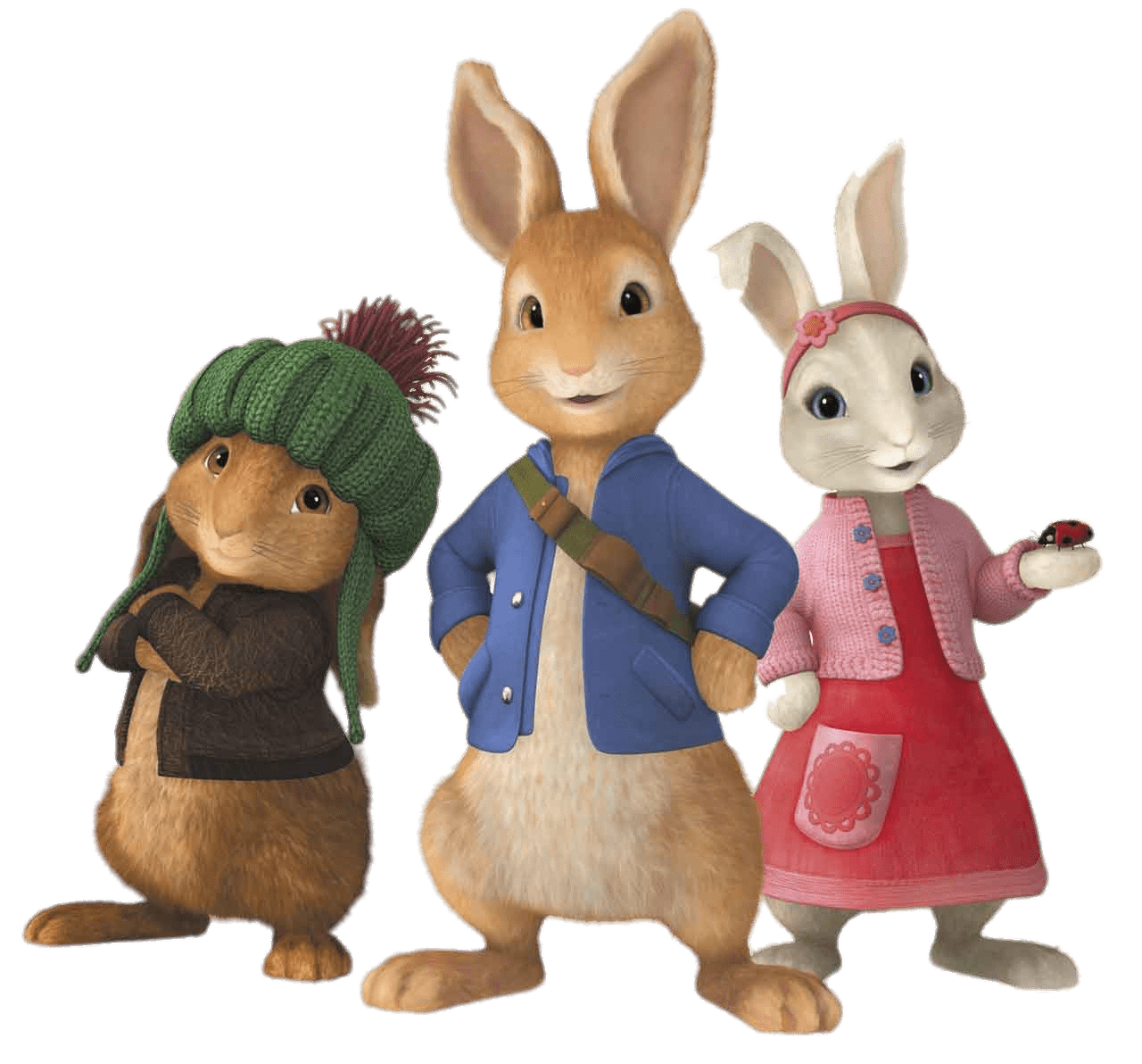 Peter rabbit png. And friends transparent stickpng