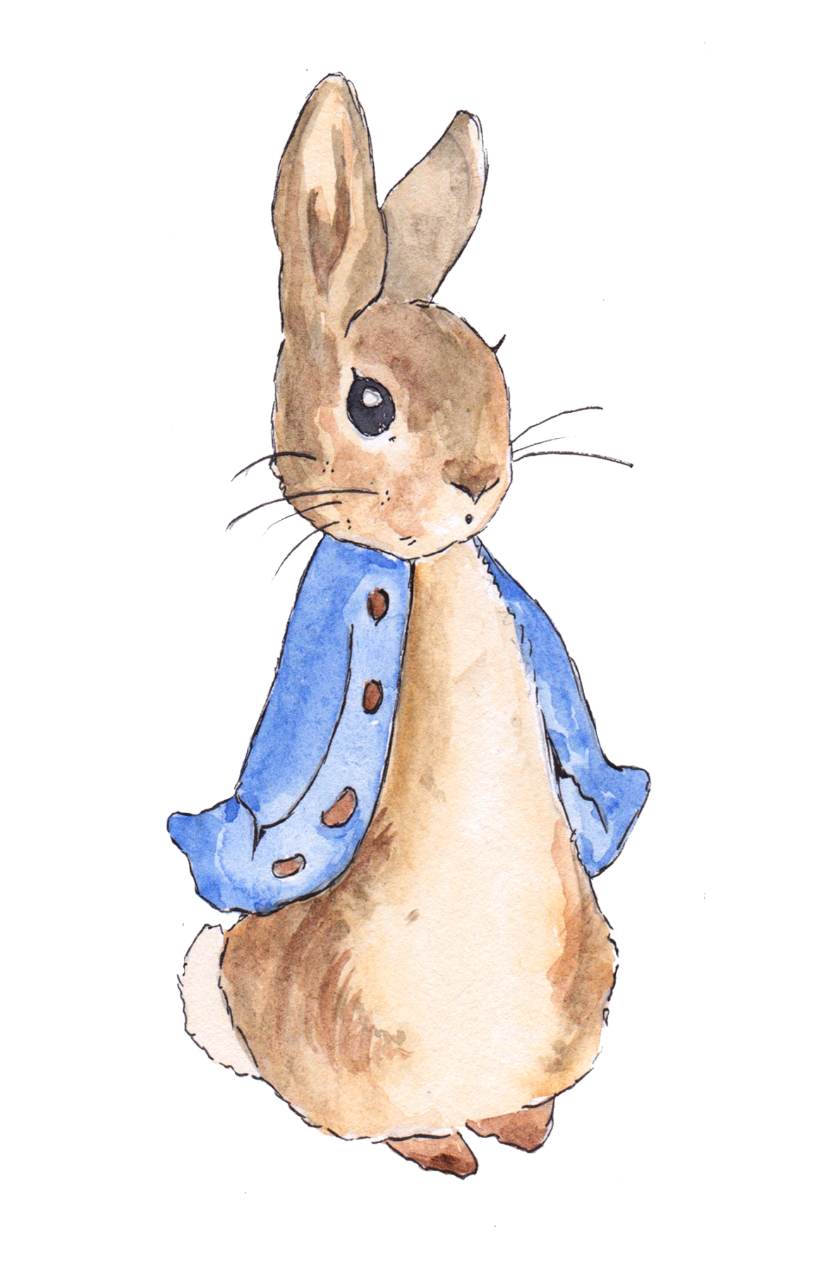 Peter rabbit png. Top themed events in