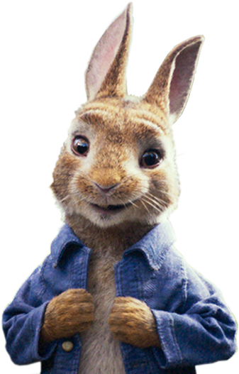 Peter rabbit png. Shuffle game only at