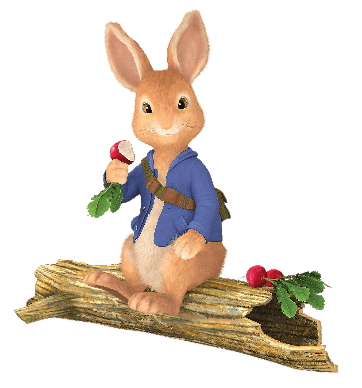 Peter rabbit png. Sitting on tree trunk