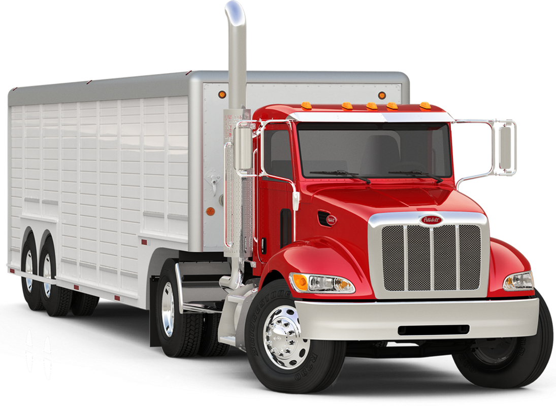 Peterbilt vector illustration. Model exterior