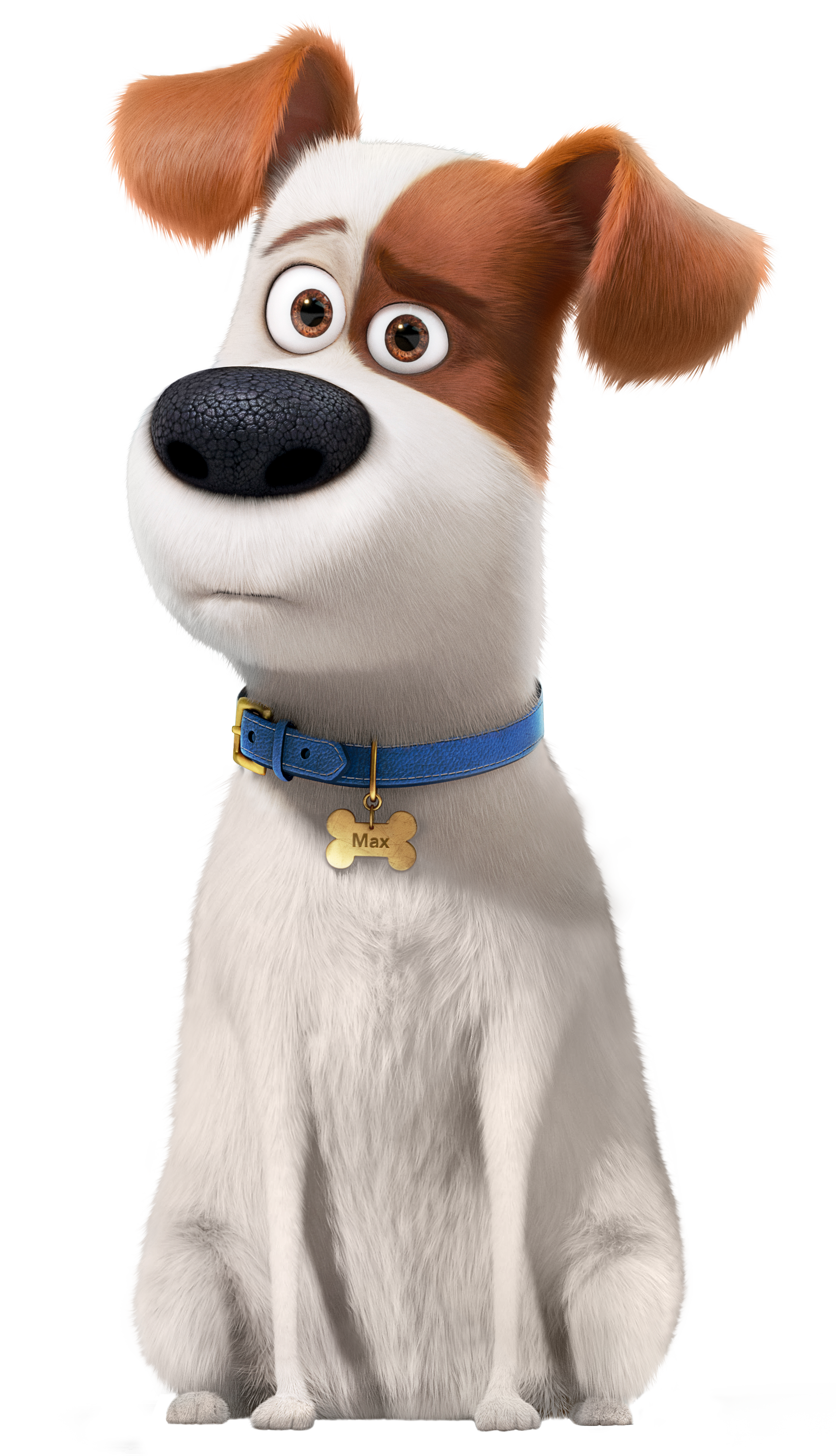 Pets clipart secret life pets. The of max transparent