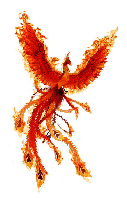 Phoenix bird png. Fire icon transparentpng