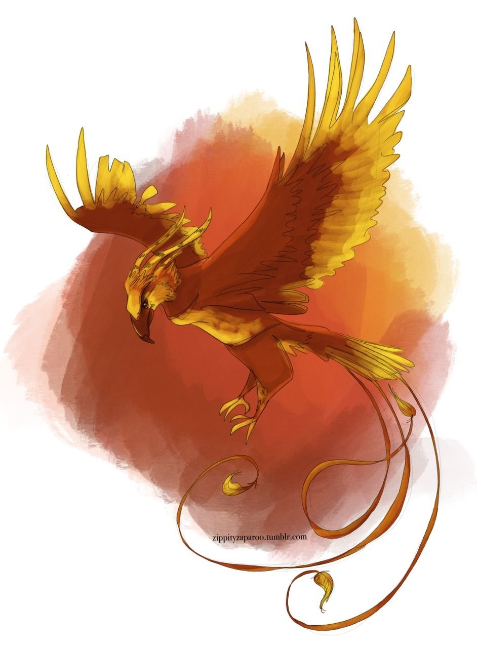Phoenix clipart fawkes. Hawkes the day hp