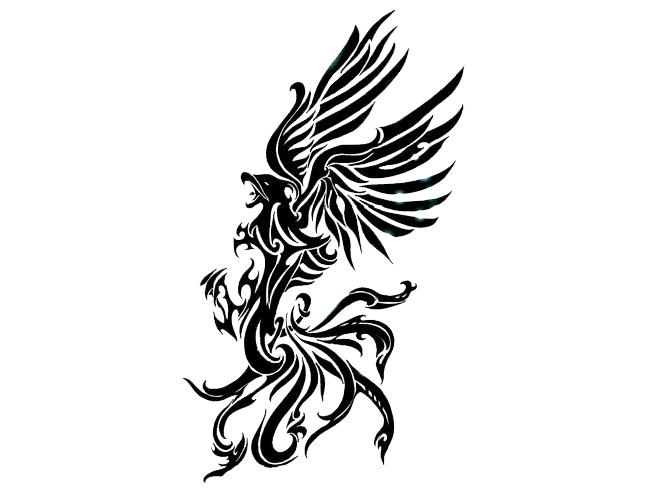 Transparent phoenix white background