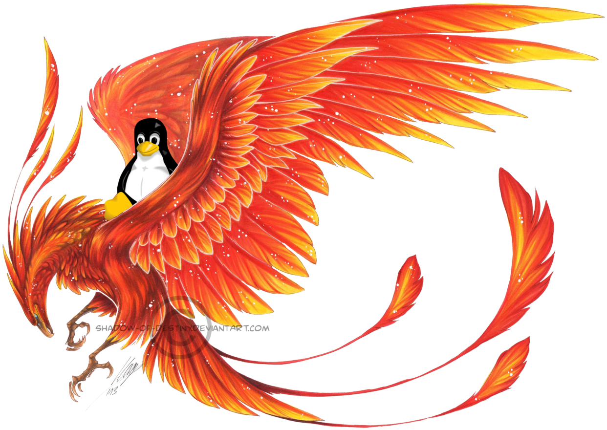 Phoenix drawing png. Download mythological creature x