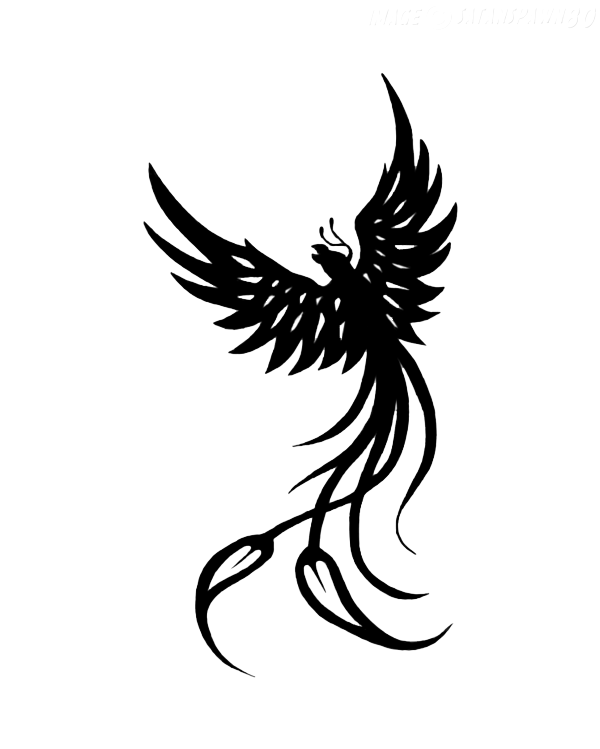 Phoenix drawing png. Tattoo up transparent stickpng