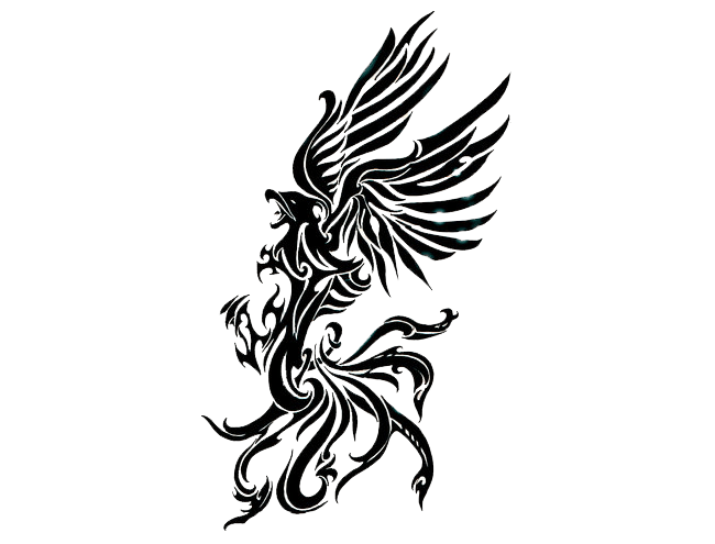 Drawing phoenix sleeve. Tattoo right transparent png