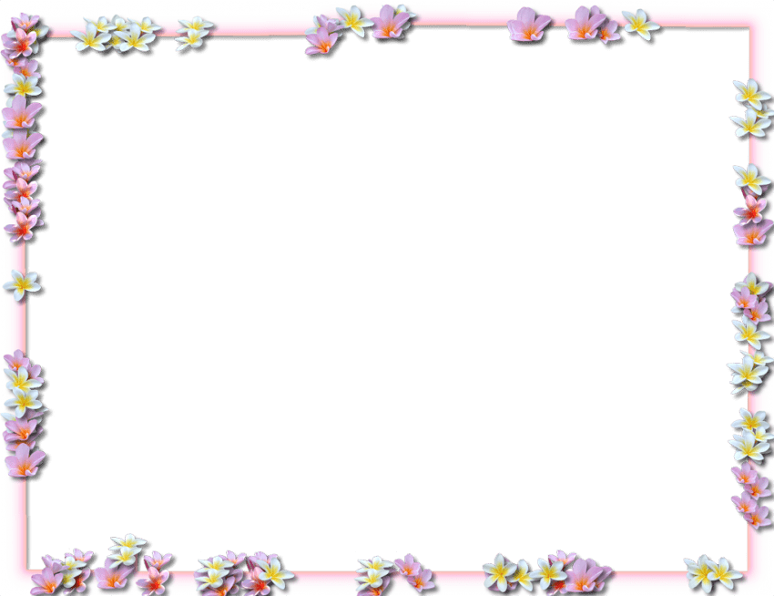 Photo borders png. Flowers pic free images