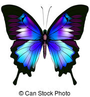 Butterfly clipart. Stock illustrations clip art picture royalty free