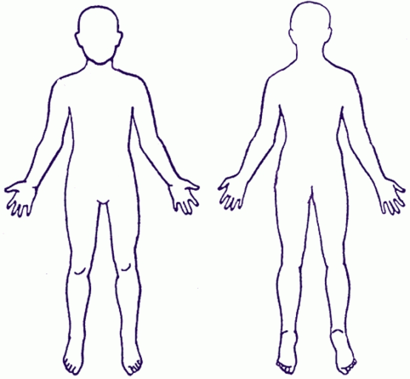 Photo clipart human. Body outline school