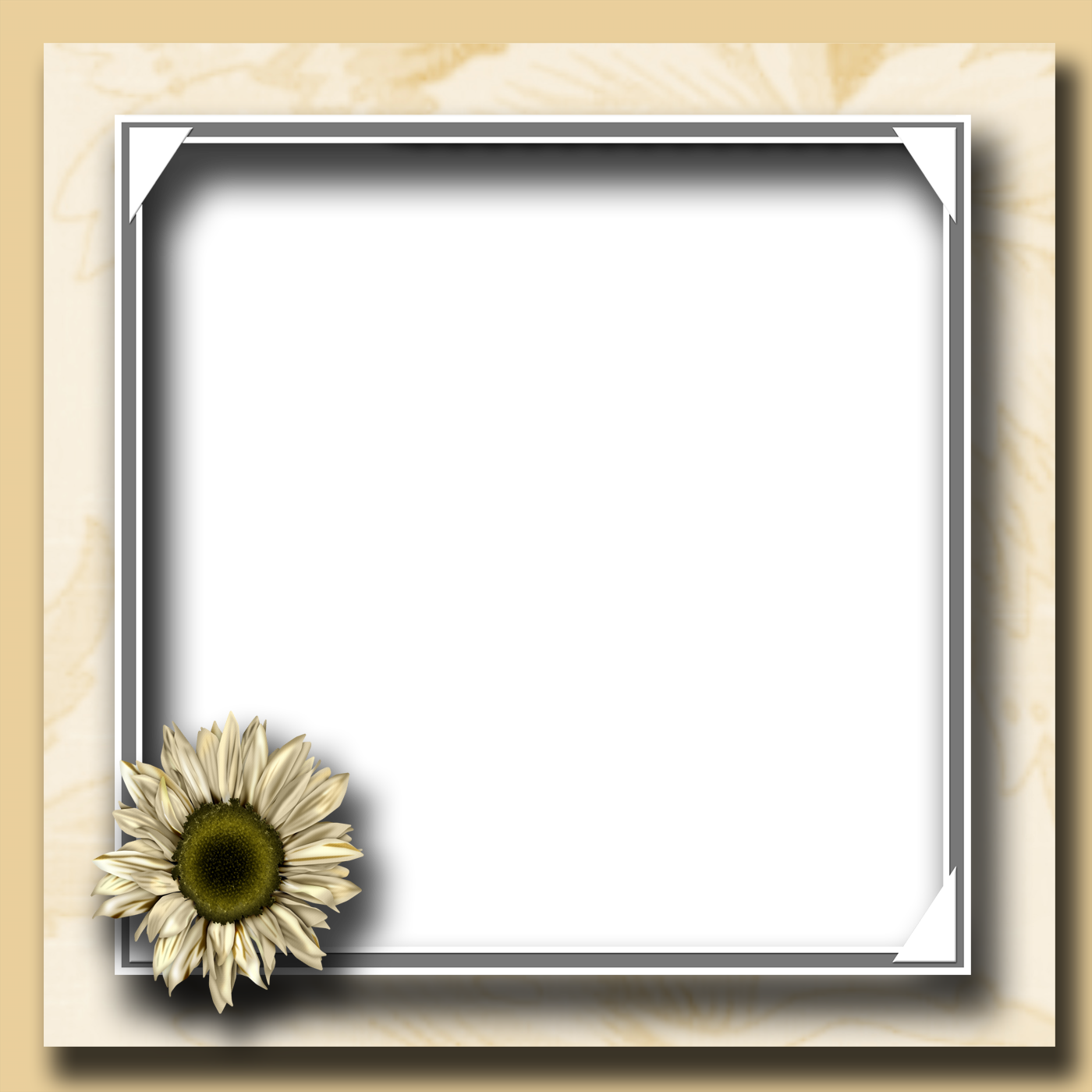 Photo frames png format free download. Frame transparent pictures icons