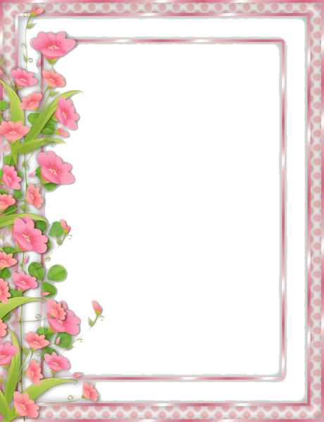 Picture borders png. Flowers transparent images all