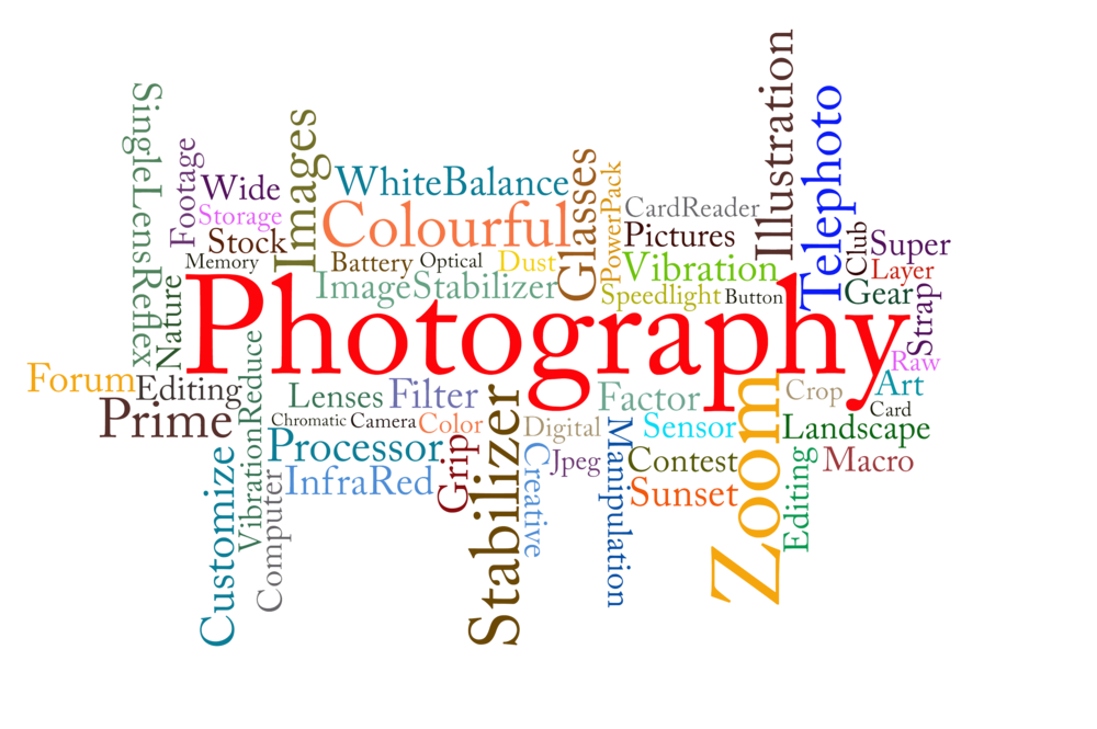 Free cliparts download clip. Photography art png clip free library