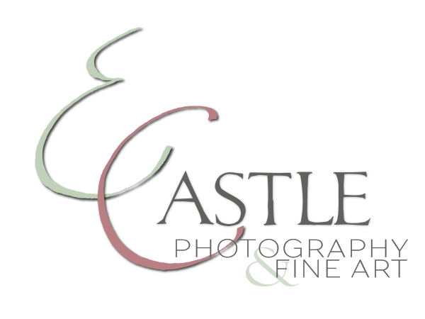 Photography art png. E castle artist texas
