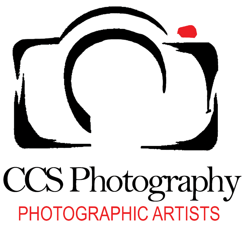 Wedding photographer st petersburg. Photography art png black and white stock