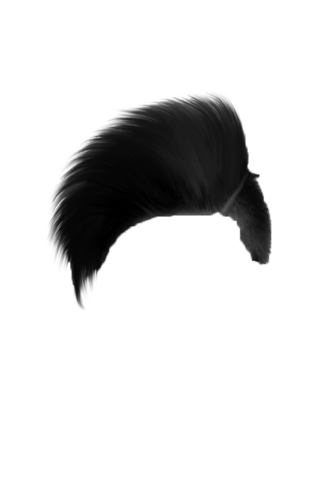 Photoshop hair png. New republic day photo