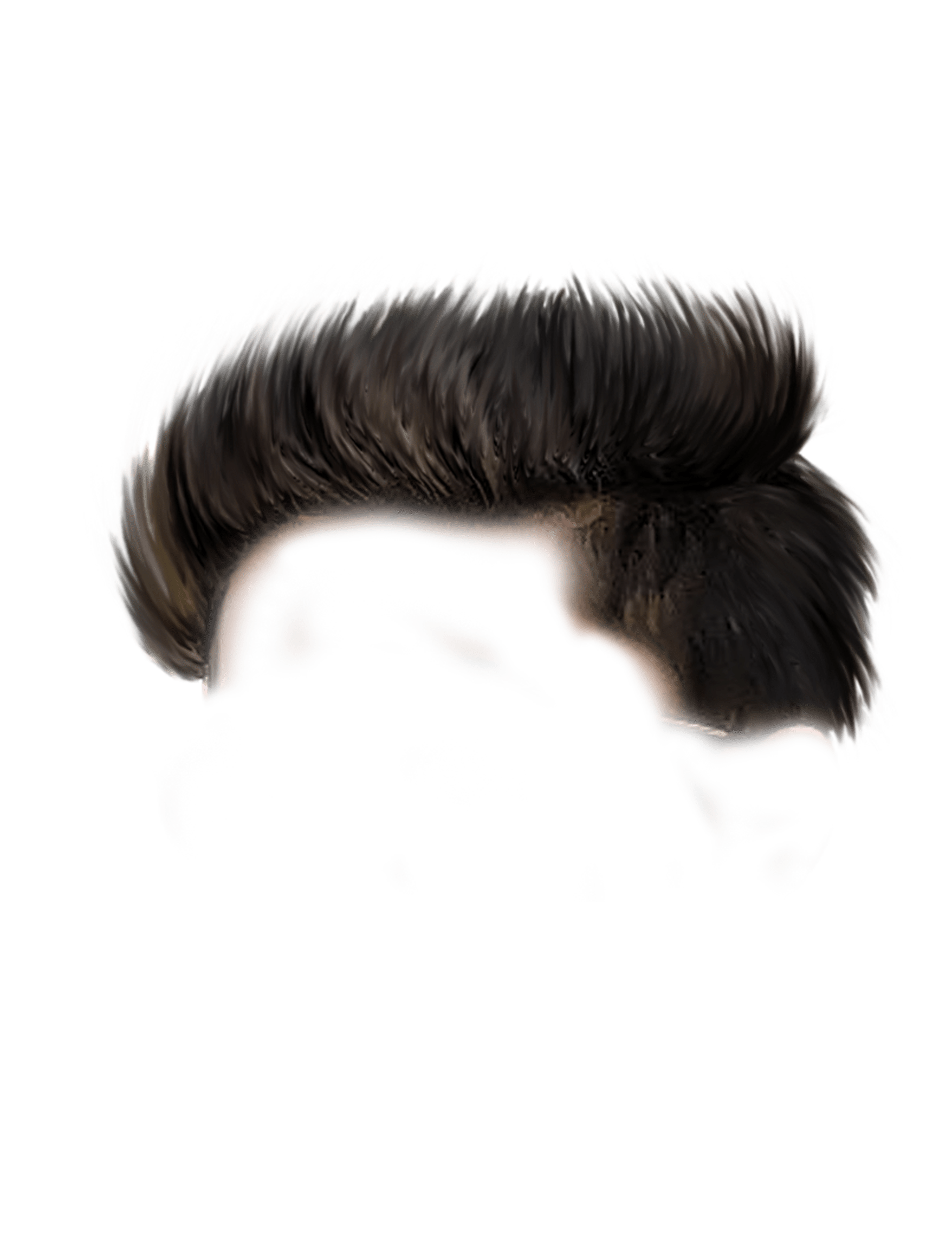 Photoshop hair png. Sr editing zone sample