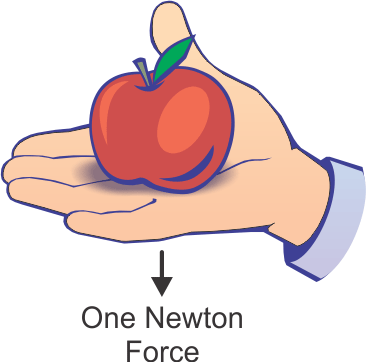 Physics clipart newton meter. What is a force