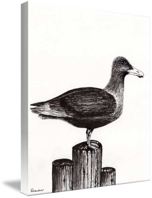 Pier drawing black ink. Seagull portrait on piling