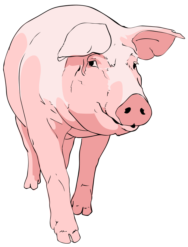 File clipart svg wikipedia. Pig clip art banner black and white