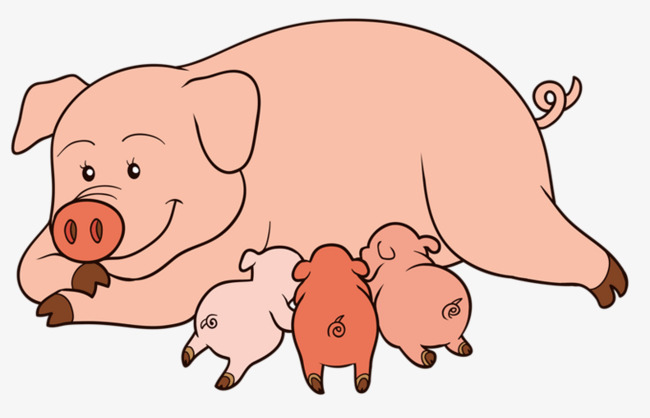 Pig clip art piglet. Hand painted animation sow
