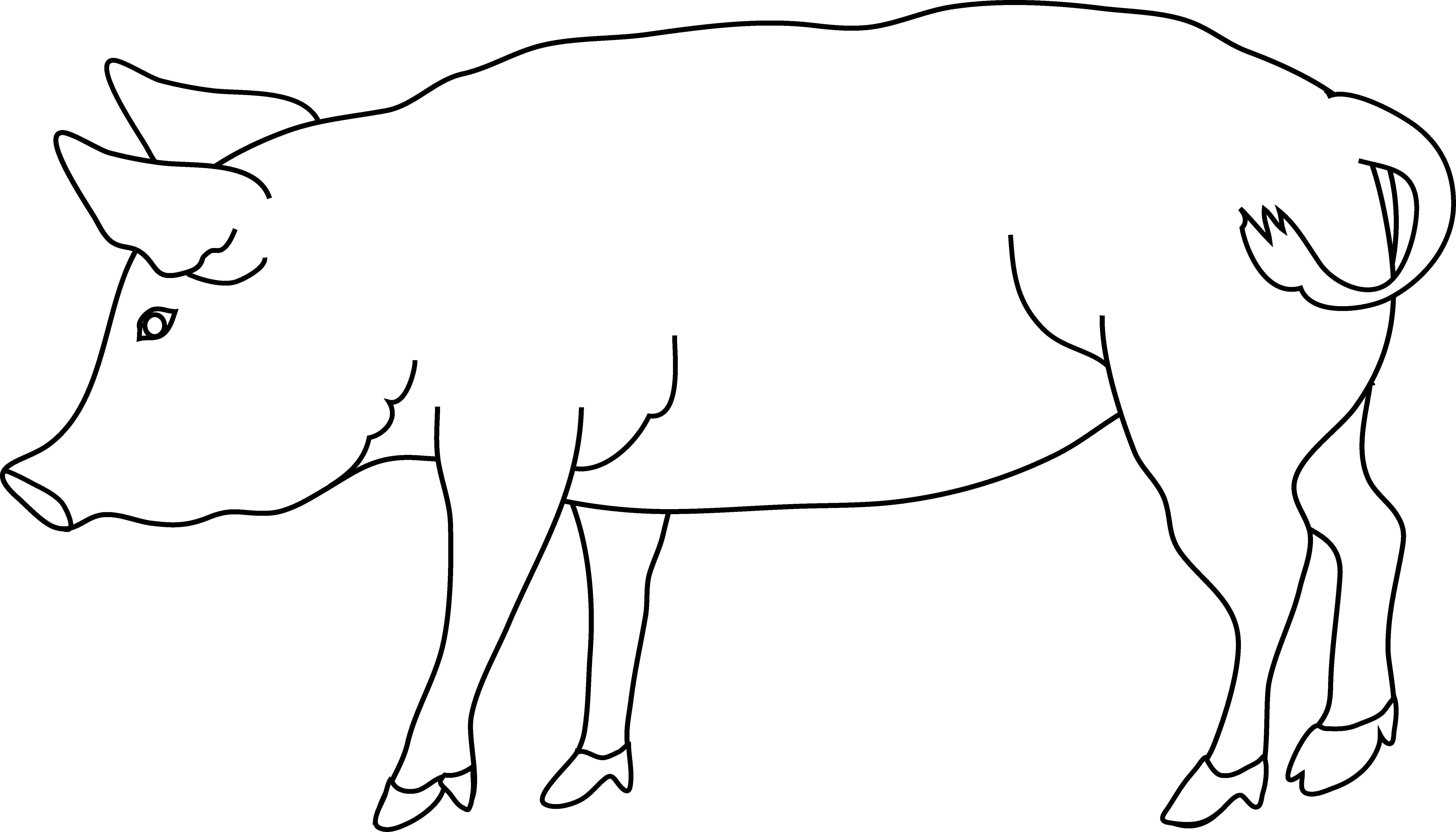 Pig clip art realistic. Free line download on