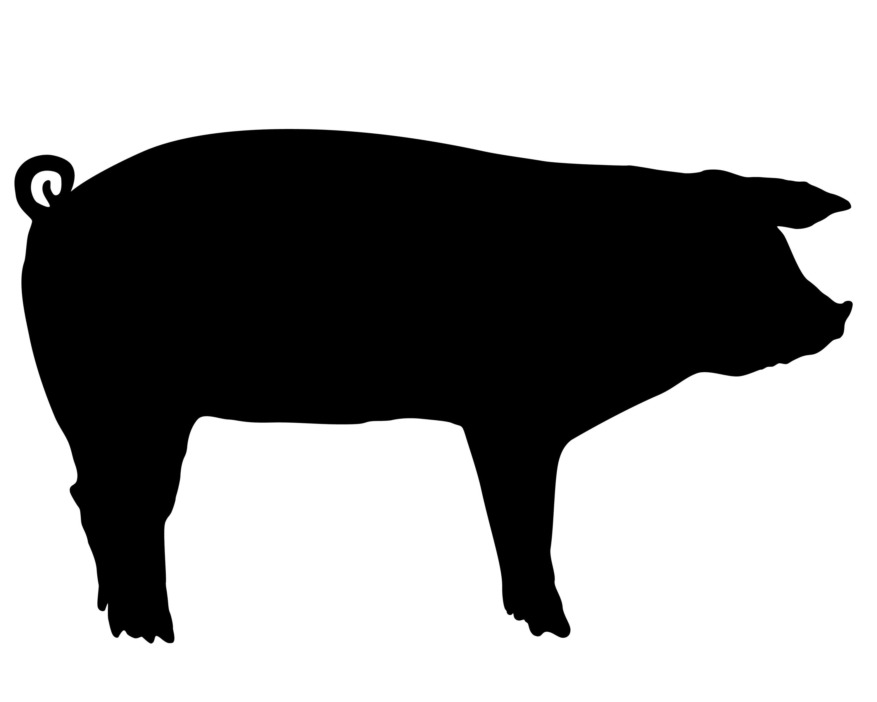 Show farm animals stencil. Pig clip art silhouette graphic royalty free library